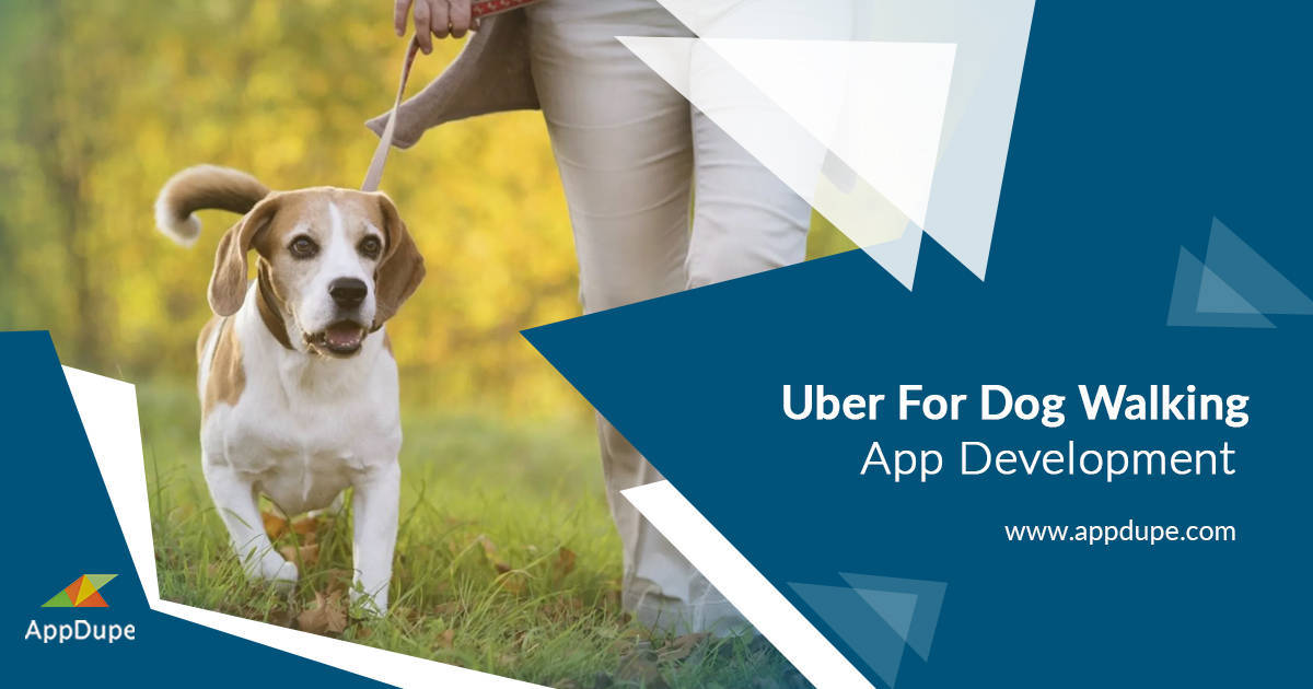 https://www.appdupe.com/uber-for-dogwalker website snapshot